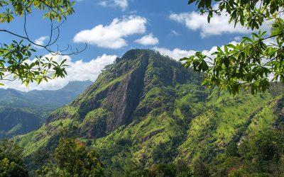 Vet om te doen in Ella, Sri Lanka